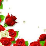 Biglietto con cornice di rose