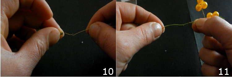 mimosa con ferro filato 10 11
