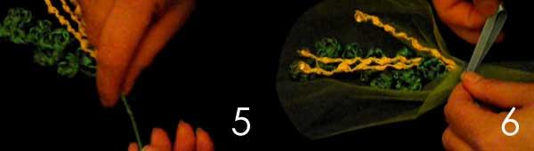 montaggio-mimosa
