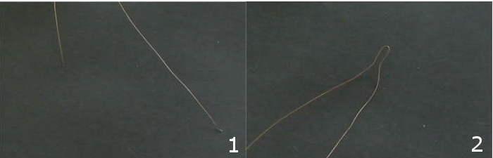 accessori-capelli-1-2