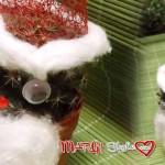Come decorare una pianta a Babbo Natale