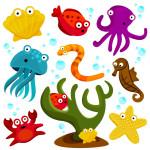 Animali marini da stampare e colorare